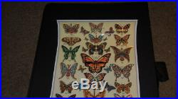 Dead & Company EMEK Poster Butterflies AE #/200 Signed & Doodled