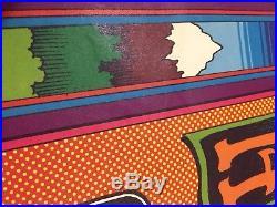 Vtg 1971 Gratefull Dead Poster Ann Arbor Michigan Gary Grimshaw Design